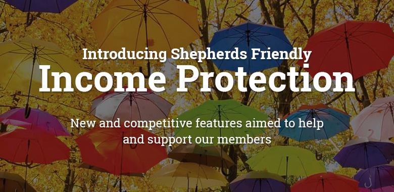 new income protection plan banner
